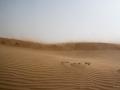 Tempête de Sable - Désert - Dubai